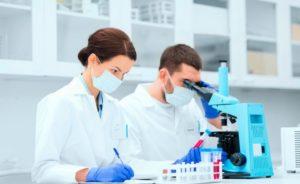 Анализ крови на эхинококк: методы сдачи, расшифровка исследования и коэффициент нормы