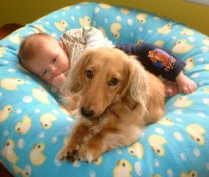 Глисты у грудного ребенка и у детей до года, глисты у годовалого ребенка, симптомы и признаки глистов у новорожденных