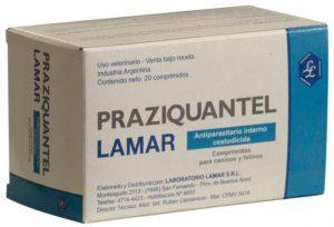 Глисты в легких человека, легочные глисты и какие паразиты живут в легких человека, симптомы паразитов в легких