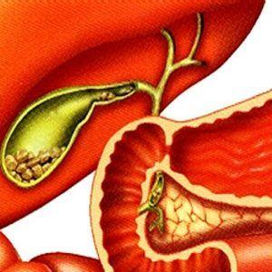 Пижма от глистов и паразитов, как пить и заваривать Пижму от паразитов