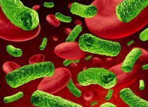 Симптомы и признаки паразитов в организме у человека: как выявить наличие паразитов